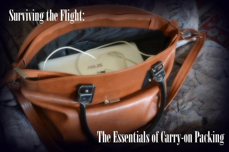 handbag-324810_1920